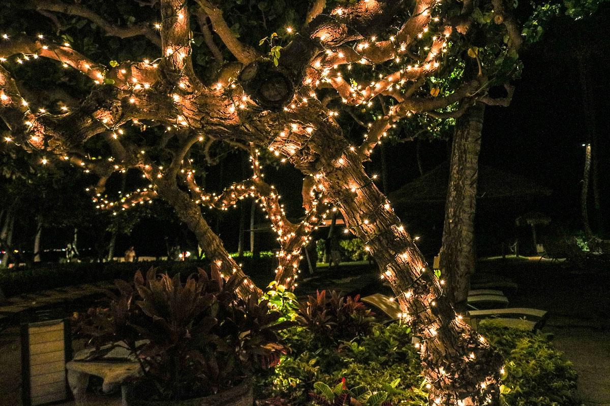 Ne négligez pas l'éclairage de votre jardin